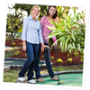 Picture of Jungle Golf